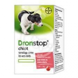 Dronstop Chiot