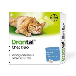 DRONTAL CHAT