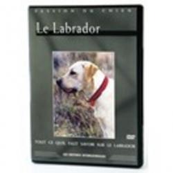 Le Labrador - DVD Passion du chien.