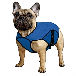 Aqua coolkeeper 'Pet Jacket' manteau rafraîchissant