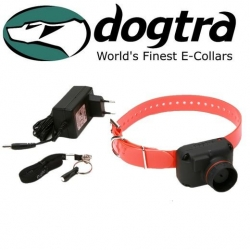 Collier pour chien Beeper StB Dogtra