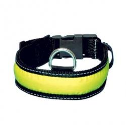 Colliers de sécurité lumineux pour chien