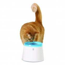 FONTAINE A CHAT FRESH CLEAR 2L