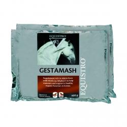 EQUISTRO GESTAMASH PROTECT 9X600 G