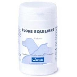 FLORE EQUILIBRE 2X15 GELULES