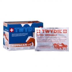 TWYDIL HIPPACAN + C 10 SACHETS