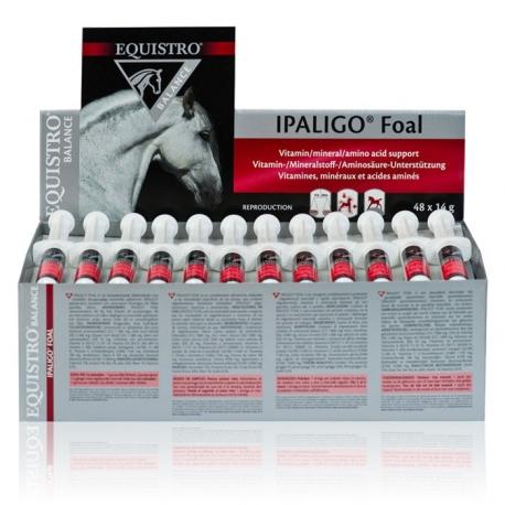 EQUISTRO IPALIGO FOAL - Boite de 48 seringues