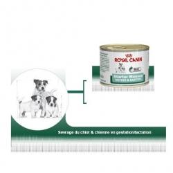Wet Starter Mousse - Royal Canin