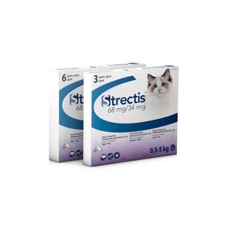 Strectis Chat 5
