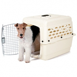 'Traditionnelle' kennel