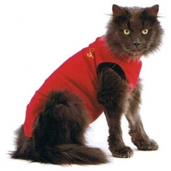 MEDICAL PET SHIRT CHAT