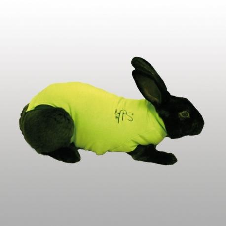 MEDICAL PET SHIRT LAPIN