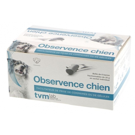 OBSERVENCE Chien