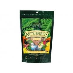 NUTRI-BERRIES TROPICAL PARAKEET 300G