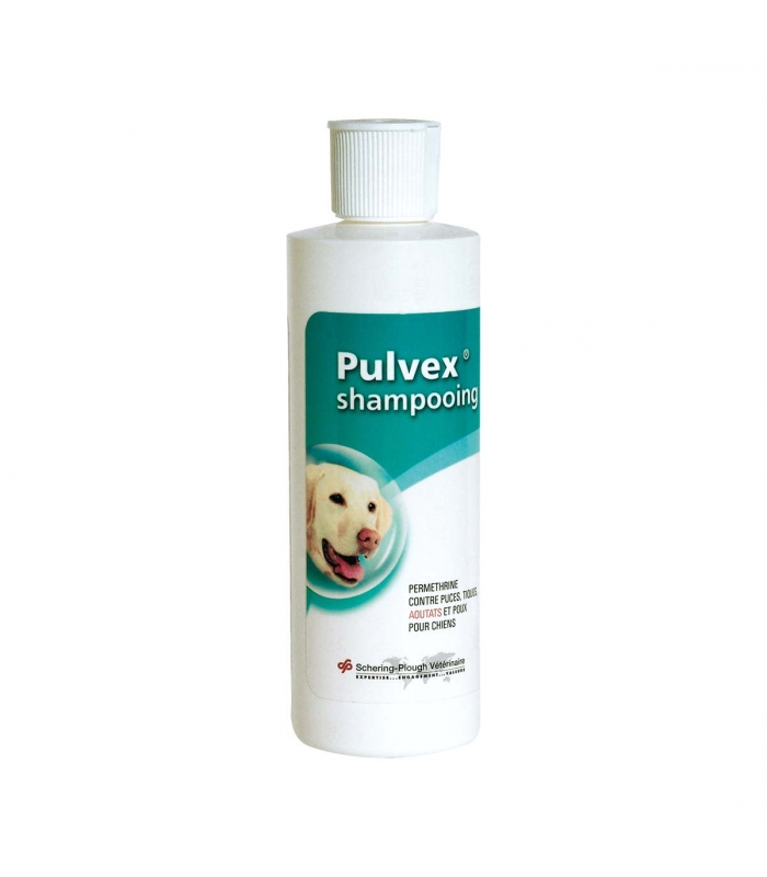 PULVEX SHAMPOOING