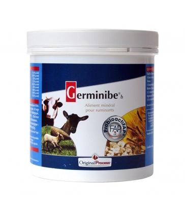 Germinibe 500g