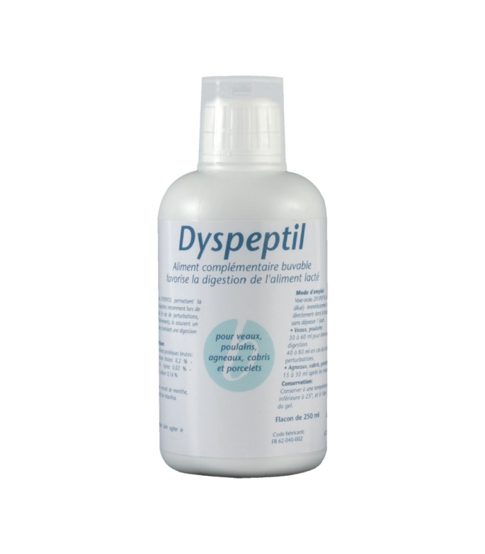 DYSPEPTIL - Flacon de 250ml