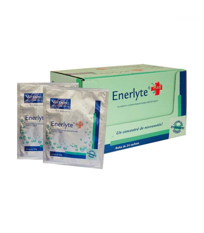 ENERLYTE Plus - 24 sachets