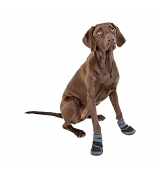 CHAUSSURES pour chien ACTIVE Taille M