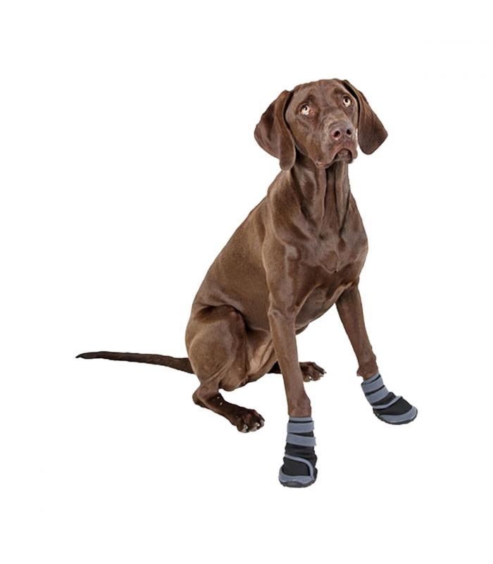 CHAUSSURES pour chien ACTIVE Taille M