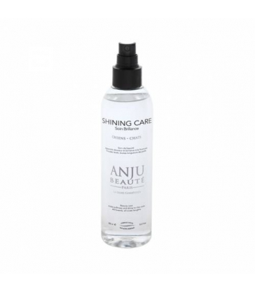 Shining care Anju beauté