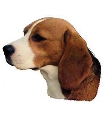 Autocollants Beagle