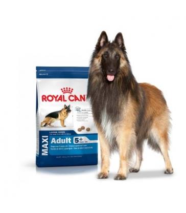 Royal Canin Maxi Mature 4kg