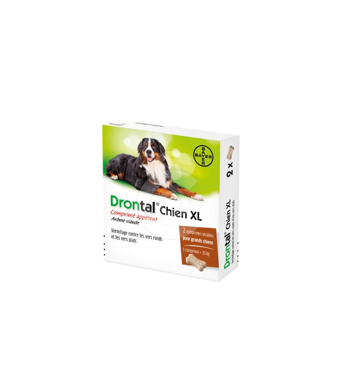 Drontal Chien XL