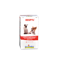 Respyl Solution Buvable