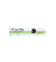 Panacur pâte Cheval . Boîte de 1 applicateur de 24 g