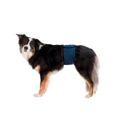 Bande ventrale pour chien mâle