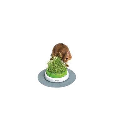 Jardin d'herbe à chat Catit Senses 2.0