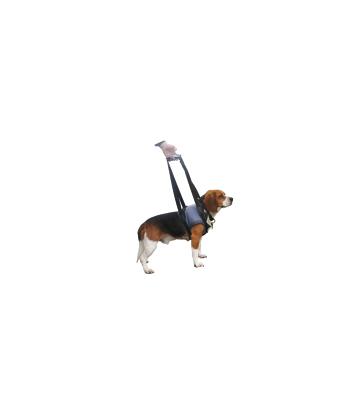 Harnais Handy-Canis pour chien paralysé du train avant