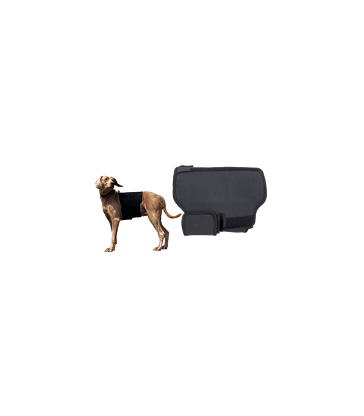 Protection lombaire pour chien Back On Track