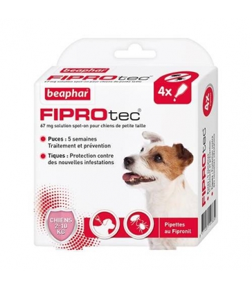 Pipettes antiparasitaires Beaphar Fiprotec pour petits chiens