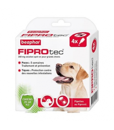 Pipettes antiparasitaires Beaphar Fiprotec pour grands chiens