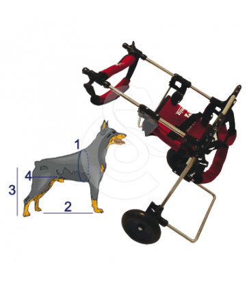 Chariot Canis-mobile avec Handy-Canis