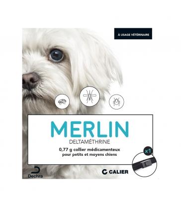 COLLIER MERLIN PT & MOYEN CHIEN