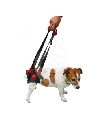 Harnais Handy-Canis pour chien paralysé du train arrière