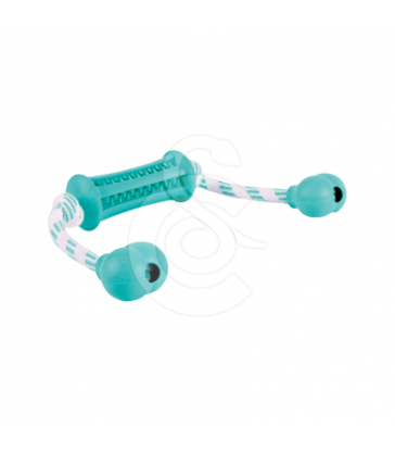 Jouet chien Trixie : Denta Fun Baton avec corde
