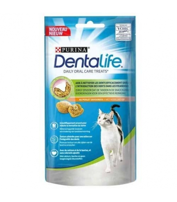 Dentalife Chat