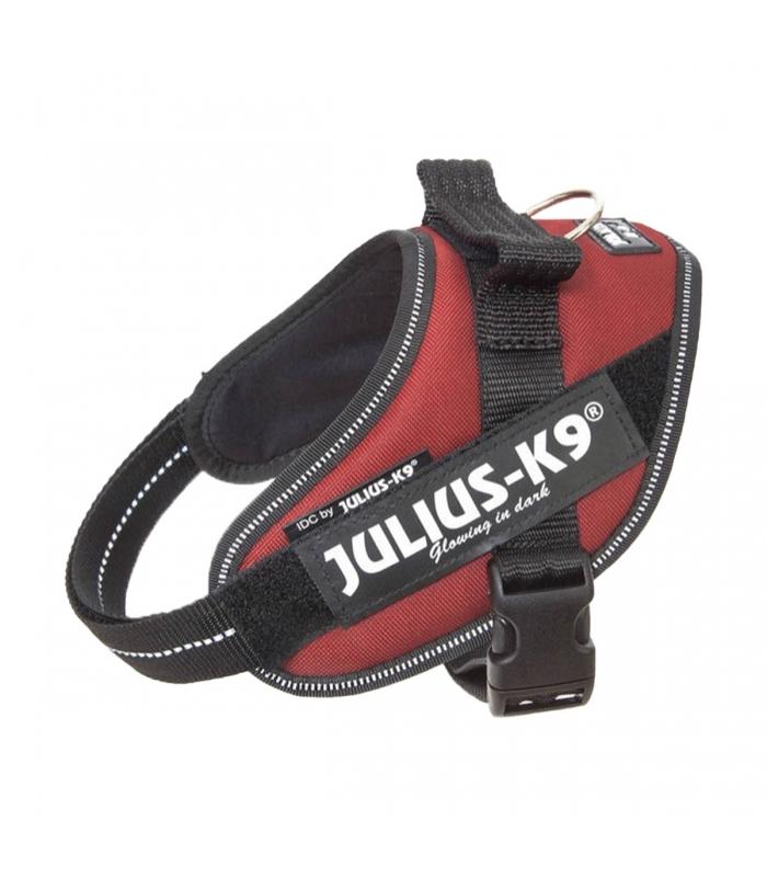 HARNAIS JULIUS IDC POWER BORDEAUX Taille mini