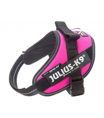 HARNAIS JULIUS IDC POWER FUCHSIA Taille mini-mini