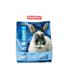 Care + Lapin