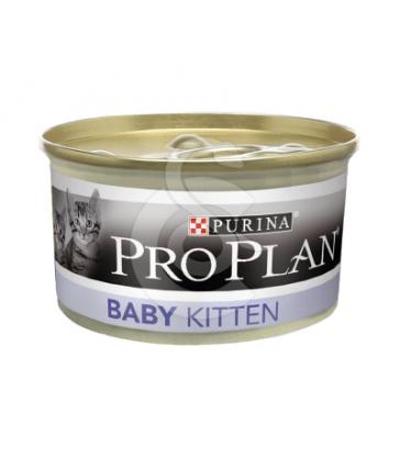 Cat Baby Kitten Mousse Poulet Boîte