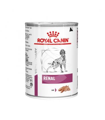 Dog Renal Boîte