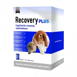 Science Recovery Plus - 10 sachets