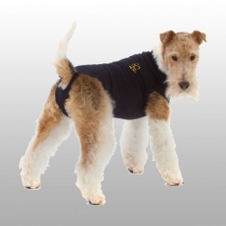 MEDICAL PET SHIRT CHIEN