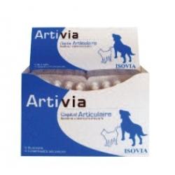 ARTIVIA NF 10 X 15cp