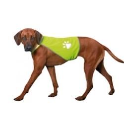 GILET SAFETY DOG